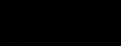 ФГБОУ ВО «Государственный институт русского языка им. А.С. Пушкина»